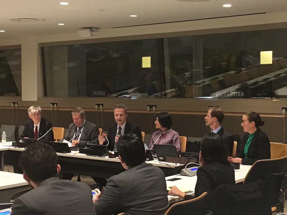 special rapporteur human rights and environment New York Experts Meeting