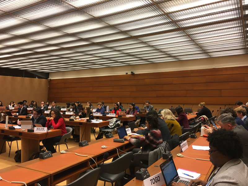 special rapporteur human rights and environment Air pollution consultation in Geneva