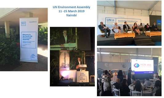 Consulation regarding Escazu Agreement - Special Rapporteur Environments and Human Rights